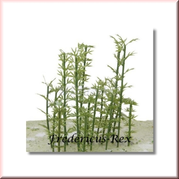 Green Line Bamboo Trees Mix 12 Pieces